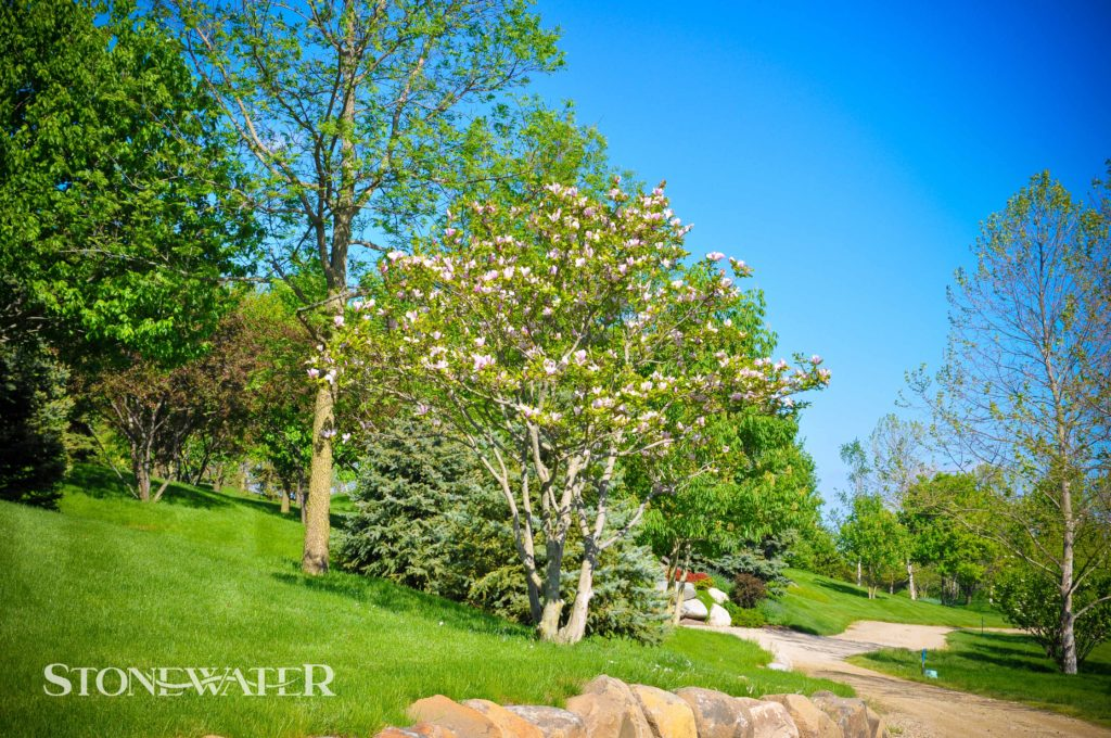 Stonewater Landscape Features 2020-11