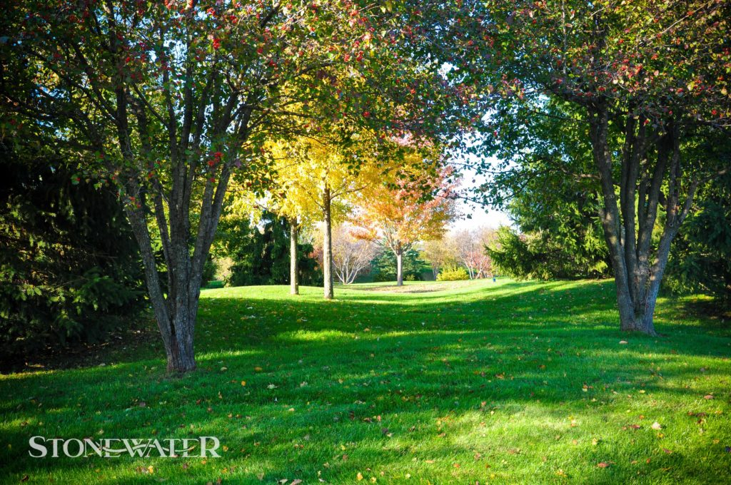 Stonewater Landscape Features 2020-39